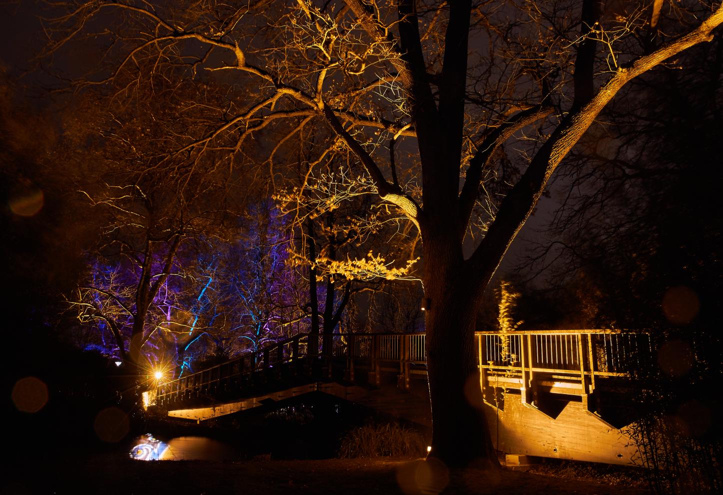 IMG_0628 Winterlichter