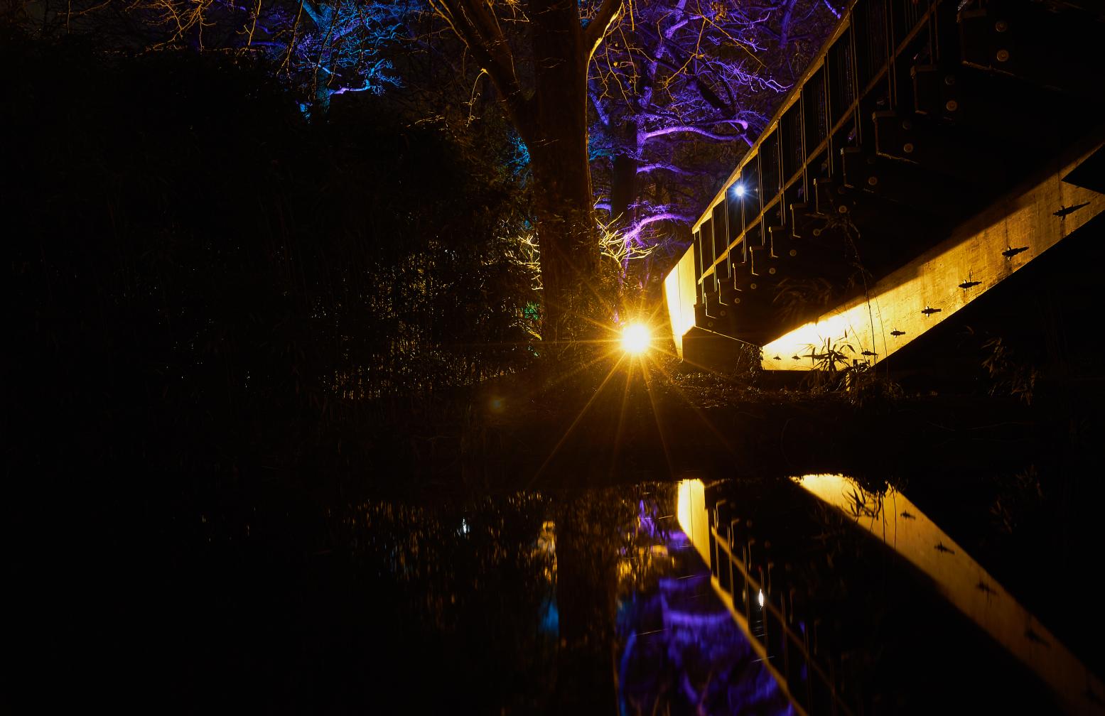 Luisenpark, Winterlichter